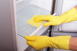 fridge cleaning 2